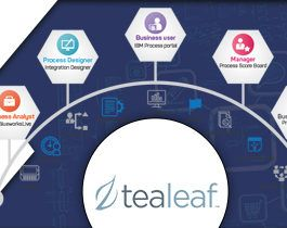 IBM Tealeaf: For effective and better decision making for enriching Customer Experience